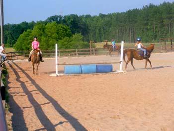 Lynnwood Equestrian Center donkey