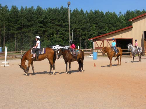 Lynnwood Equestrian Center outdoor run-in sheds