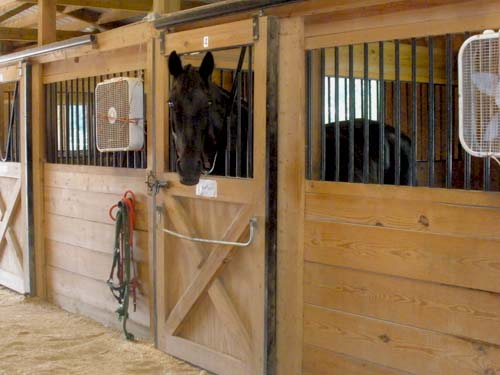Lynnwood Equestrian Center 20 stall barn